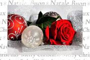 Rosenweihnacht