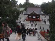 鶴岡八幡宮。階段がしんどかった・・・