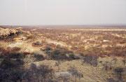 Blick über die Landschaft bei Outjo im Süden des Etosha NP. Dank unserem Reiseführer (Lonely Planet) fanden wir, in einem Internet Cafe in Outjo, die Besitzerin dieses kleinen Zeltplatzes inmitten der Weite Namibias, wo wir unser Zelt aufschlugen.