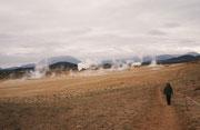Überblick über das Geothermalgebiet Namaskard am Rande der Krafla.