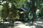 Unsere Unterkunft im Manu Wildlife Center. Ein fein eingerichtetes, luftiges Häuschen auf Stelzen, mit Toilette und Dusche und mit Fliegengeflecht abgedichtet, dass keine Mücke ins Innere gelangen sollte (zudem gab es noch Moskitonetze über dem Bett).