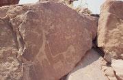 Neben den erstaunlich genauen und naturgetreuen Darstellungen der Tiere selbst werden - wie hier auf der sogenannten Löwenplatte, aber auch auf dem nächsten Bild - die Fährten (oder Spuren) der Tiere dargestellt.