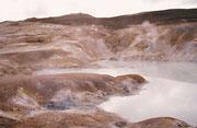 Der Ausbruch 1984 muss eindrücklich gewesen sein. Unerbittlich schob sich damals die Lava siedendheiss voran, alles Leben grossflächig unter sich begrabend.