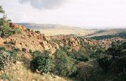 Dieses und die folgenden Bilder wurden im Jahre 2004 anlässlich einer kleinen Reise nach dem CITES A C Meeting aufgenommen. Wir besuchten damals auch das 5300 ha grosse Kgaswane Mountain Reserve in der Nähe von Rustenburg (mit Bestand von Rappenantilopen)
