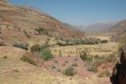 Hier befinden wir und zwischen Picillacta und Cusco bei der Ruine eines grossen Tores, genannt Rumicolca und blicken in die Landschaft. Dieses Tor war der Zugang von Cusco gegen Süden und hier wurde dieser Zugang geschützt und kontrolliert.
