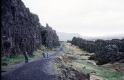 Þingvellir liegt in einer Grabenbruchzone im Grenzbereich der eurasischen und der nordamerikanischen tektonischer Platten, die hier langsam voneinander driften. Deshalb ist das Gebiet auch geologisch von Bedeutung.