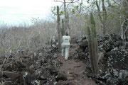 """Auf San Cristobal, der östlichsten Galapagisinsel liegt die Hauptstadt des Archipels, Puerto Baquerizo Moreno (4816 Einwohner). Dort mussten wir unsere Nahrungsvorräte ergänzen. Hinter dem Besucherzentrum stiegen wir aus den """"Frigate Bird Hill""""."""