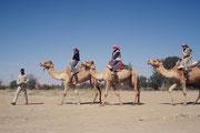 In Swakopmund gibt es nicht nur ein Museum mit Exponaten zu Mineralogie und Archäologie, sondern auch ein Meeresaquarium und, etwas ausserhalb der Stadt, eine Kamelfarm, wo man mit Dromedaren abenteuerlich durch die Wüste reiten kann.