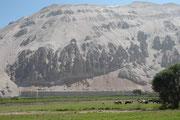 Während die Berghänge selbst karg und trocken sind, ist der Talboden grün und Agrarland. Die Bauern profitieren davon, dass sich Regenwolken, die vom Meer her kommen an der höheren, zweiten Gebirgskette stauen und das Land mit reichlich Regen versehen.