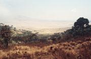 Blick auf der Fahrt vom Ngorongoro Kraterrand hinunter in die Serengeti Ebene.