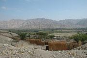 Landschaft auf der Fahrt nach Nazca. Die umliegenden Berge sind trocken und kaum von Vegetation bedeckt, aber die Täler sind - fast wie Oasen - grün und intensiv bewirtschaftet.