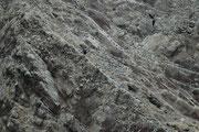 Jeder der Punkte auf dem Felsen ist ein Vogel und zwar handelt es sich hier mehrheitlich um Guanotölpel (Sula variegata). Das grosse Nahrungsangebot an Sardellen (im kalten Huboldtstrom) erlaubt es ihnen, regelmässig mehrere Küken grosszuziehen.