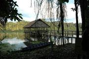 Eine weitere morgendliche Exkursion brachte uns an einen Altarm des Madre de Dios Flusses. Hier stiegen wir auf ein anderes Boot um und setzten unseren Ausflug fort.