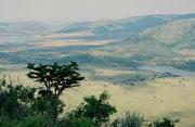 Im Jahre 2004 besuchten wir auch den 55'000 ha umfassenden Pilanesberg NP, der in einem längst erloschenen Vulkan liegt. Vom Aussichtspunkt auf einem Hügel im Zentrum des Parks hat man einen guten Überblick (wir sahen von dort fünf Weisse Nashörner).