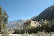 Im Urubambatal auf der Fahrt nach Aguas Calliente. Agaven und 6000m hohe Schneeberge muten ungewohnt an, aber wir befinden uns in der Tat auf etwa 3000 müM. Die Schmalspurbahn verlässt Cusco um 4 Uhr in nächtlicher Dunkelheit.