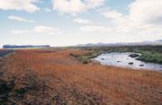 Landschaft im Süden, in Richtung Vik.