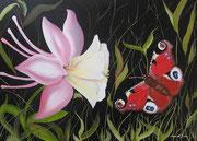 L'aquilegia e la Farfalla - Olio su tela - 50x70 - 2011