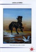 Estratto Catalogo ArtExpò Vernice Art Fair 2011