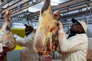 Reportage marché de Rungis 9 © Olivier Philippot