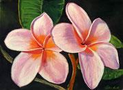 """Wailea pink"" Pastell 22x29,5cm, (C)D.Saul 2016"
