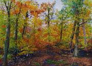 """Autumn"" Pastell, 22x29cm,9x12´, UART 400, Sennelier und Terry Ludwig Softpastelle, (C) D.Saul 10/ 2017"