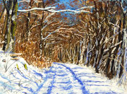 """""""Winter path"""" Pastell, 21x29cm, UART 400 Terry ludwig softpastelle, (C)D.Saul 2017"""