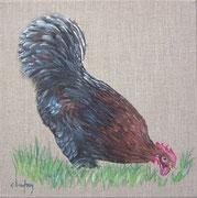 """""""Coq"""" - acrylique - 30 x 30 cm"""