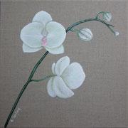 """""""Orchidées blanches"""" - acrylique - 30 x 30 cm"""