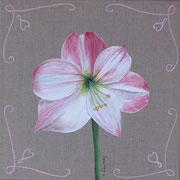 """""""Amaryllis rose"""" - acrylique - 30 x 30 cm"""