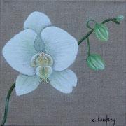 """""""Orchidée blanche"""" - acrylique - 20 x 20 cm"""
