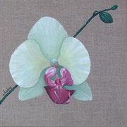 """""""Orchidée"""" - acrylique - 30 x 30 cm"""