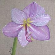 """Amaryllis mauve"" - acrylique - 30 x 30 cm"