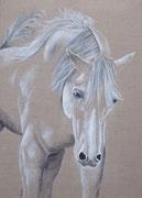 """""""Cheval fougueux blanc et gris"""" - acrylique - 50 x 70 cm"""