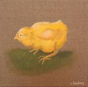 """""""Poussin jaune"""" - acrylique - 20 x 20 cm"""