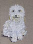 """""""Petit chien blanc"""" - acrylique - 30 x 40 cm"""
