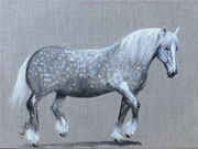 """Cheval percheron"" - acrylique - 30 x 40 cm"