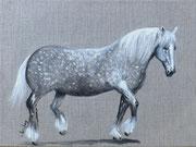 """Cheval percheron"" - acrylique - 30 x 40 cm"