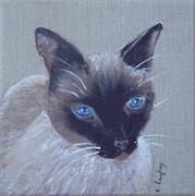 """""""Chat siamois"""" - acrylique - 20 x 20 cm"""