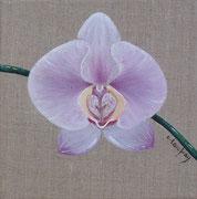"""""""Orchidée mauve"""" - acrylique - 20 x 20 cm"""