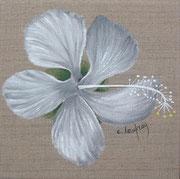 """Hibiscus blanc"" - acrylique - 20 x 20 cm"