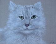 """Chat angora"" - acrylique - 40 x 50 cm"
