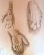 Handstudien, Bleistift auf Papier, 40x50