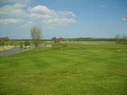 Blick zurück vom Grün auf Fairway und Biotop