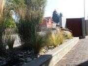 Gräser-Steingarten