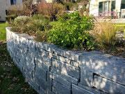 Kräutergarten in einer doppelhäuptigen Natursteinmauer (im Dezember!)