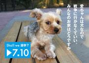 0146 大森恒誠 フォトグラファー