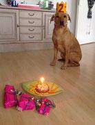 24.01.2016: Mein zweiter Geburtstag