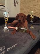 """... und in der Kategorie """"Best of Class"""" in der Jugendklasse den 2. Platz. Feiern!!!"""