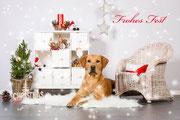 Frohe Weihnacht