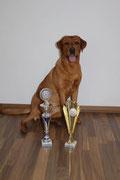 12.06.2016 Buggingen-Seefelden 3-Ländereck-Sieger: 1. Platz in der Kategorie Best of Class